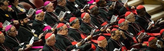 Once cardenales entran en juego antes del Sínodo con un libro para frenar la ofensivaantifamilia