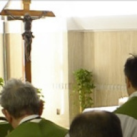 Homilía del Papa Francisco Martes de la VII semana del T.O: La tentación